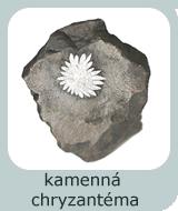 kamenna chryzantema